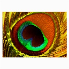 Peacock Feather Eye Large Glasses Cloth