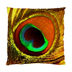 Peacock Feather Eye Standard Cushion Case (one Side)