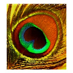 Peacock Feather Eye Shower Curtain 66  x 72  (Large)
