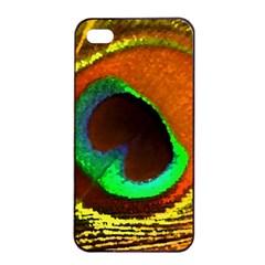 Peacock Feather Eye Apple iPhone 4/4s Seamless Case (Black)