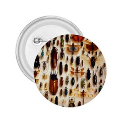 Insect Collection 2.25  Buttons