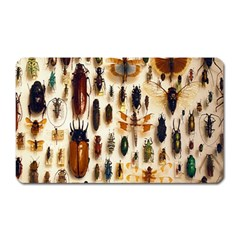 Insect Collection Magnet (Rectangular)