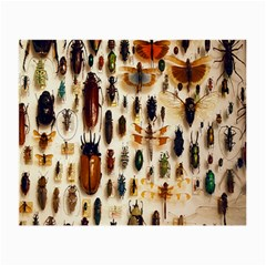 Insect Collection Small Glasses Cloth