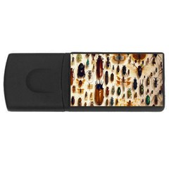 Insect Collection Usb Flash Drive Rectangular (4 Gb)
