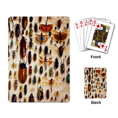 Insect Collection Playing Card