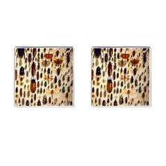 Insect Collection Cufflinks (Square)