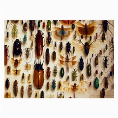 Insect Collection Large Glasses Cloth (2-Side)