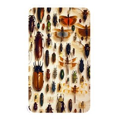 Insect Collection Memory Card Reader