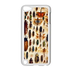 Insect Collection Apple iPod Touch 5 Case (White)