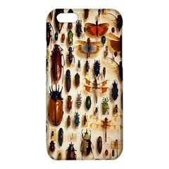 Insect Collection iPhone 6/6S TPU Case