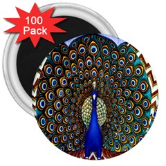 The Peacock Pattern 3  Magnets (100 pack)
