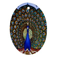 The Peacock Pattern Oval Ornament (Two Sides)