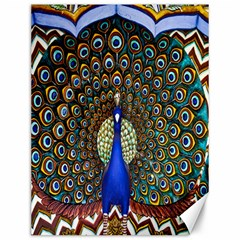 The Peacock Pattern Canvas 12  x 16