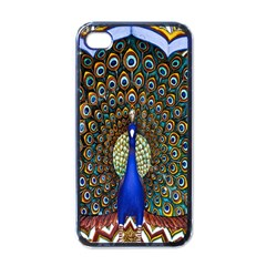 The Peacock Pattern Apple iPhone 4 Case (Black)