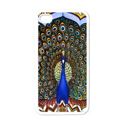 The Peacock Pattern Apple iPhone 4 Case (White)