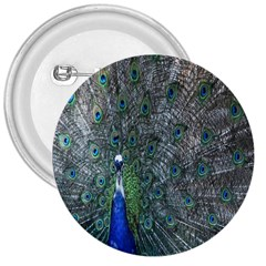 Peacock Four Spot Feather Bird 3  Buttons