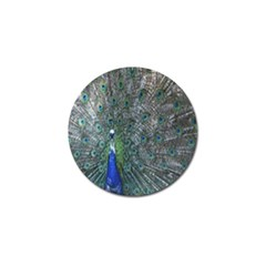 Peacock Four Spot Feather Bird Golf Ball Marker (4 pack)