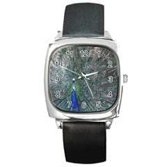Peacock Four Spot Feather Bird Square Metal Watch