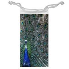 Peacock Four Spot Feather Bird Jewelry Bag