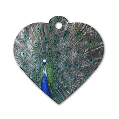 Peacock Four Spot Feather Bird Dog Tag Heart (One Side)