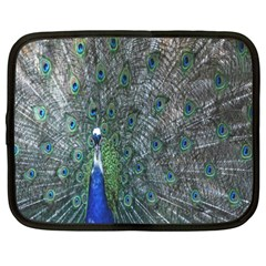 Peacock Four Spot Feather Bird Netbook Case (XXL)