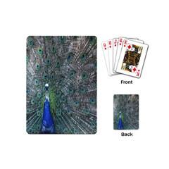 Peacock Four Spot Feather Bird Playing Cards (Mini)