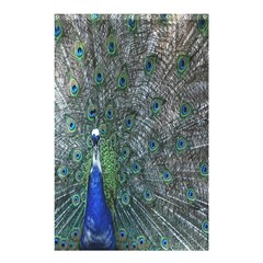 Peacock Four Spot Feather Bird Shower Curtain 48  x 72  (Small)