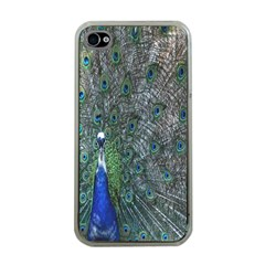 Peacock Four Spot Feather Bird Apple iPhone 4 Case (Clear)