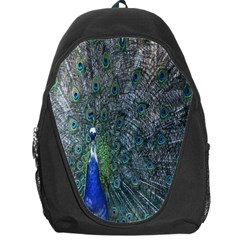 Peacock Four Spot Feather Bird Backpack Bag