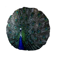 Peacock Four Spot Feather Bird Standard 15  Premium Round Cushions