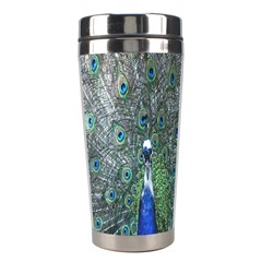 Peacock Four Spot Feather Bird Stainless Steel Travel Tumblers