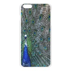 Peacock Four Spot Feather Bird Apple Seamless iPhone 6 Plus/6S Plus Case (Transparent)