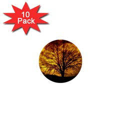 Moon Tree Kahl Silhouette 1  Mini Buttons (10 pack)
