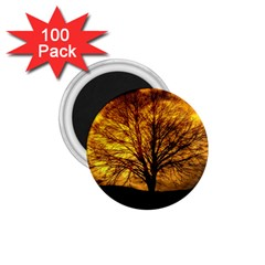 Moon Tree Kahl Silhouette 1.75  Magnets (100 pack)