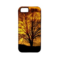 Moon Tree Kahl Silhouette Apple iPhone 5 Classic Hardshell Case (PC+Silicone)