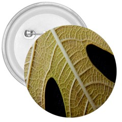 Yellow Leaf Fig Tree Texture 3  Buttons
