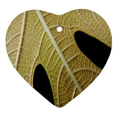 Yellow Leaf Fig Tree Texture Ornament (Heart)