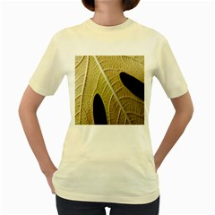 Yellow Leaf Fig Tree Texture Women s Yellow T-Shirt