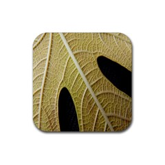 Yellow Leaf Fig Tree Texture Rubber Square Coaster (4 pack)