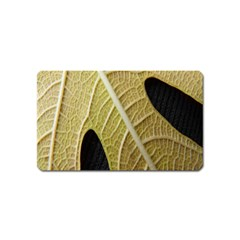 Yellow Leaf Fig Tree Texture Magnet (Name Card)