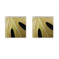 Yellow Leaf Fig Tree Texture Cufflinks (Square)