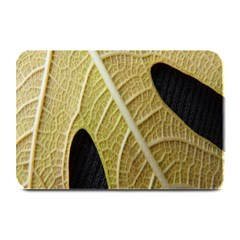 Yellow Leaf Fig Tree Texture Plate Mats