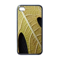 Yellow Leaf Fig Tree Texture Apple iPhone 4 Case (Black)
