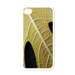 Yellow Leaf Fig Tree Texture Apple iPhone 4 Case (White)