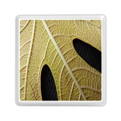 Yellow Leaf Fig Tree Texture Memory Card Reader (Square)