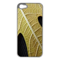 Yellow Leaf Fig Tree Texture Apple iPhone 5 Case (Silver)