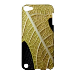 Yellow Leaf Fig Tree Texture Apple iPod Touch 5 Hardshell Case
