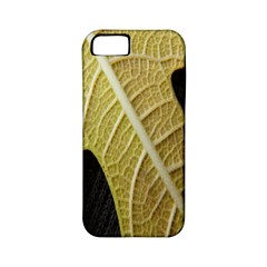 Yellow Leaf Fig Tree Texture Apple iPhone 5 Classic Hardshell Case (PC+Silicone)