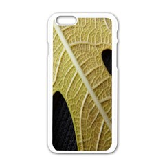 Yellow Leaf Fig Tree Texture Apple iPhone 6/6S White Enamel Case