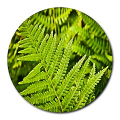 Fern Nature Green Plant Round Mousepads